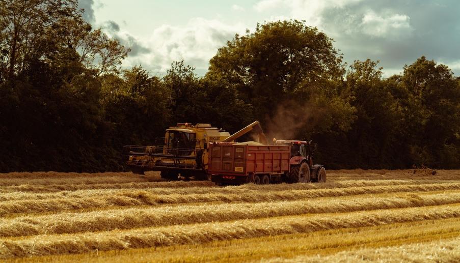 harvest ballymorgan